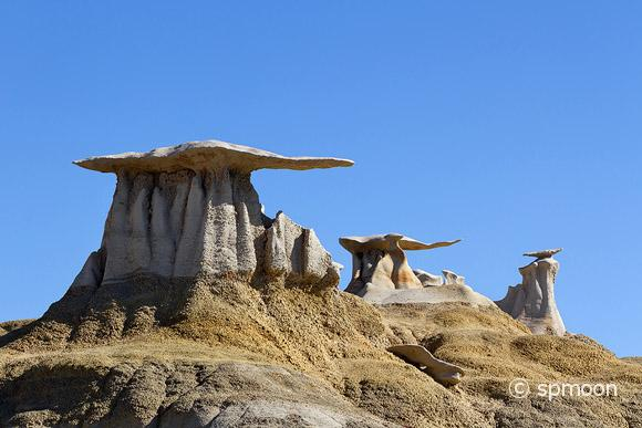 Stone Wings rock formation Bisti Wilderness, New Mexico
