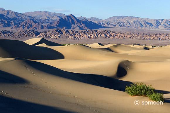 Mesquite Flat Sand Dunes at Sunrise, Death Valley National Park, CA.