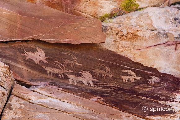 Ancient petroglyphs of bighorn sheep in Gold Butte area, Nevada