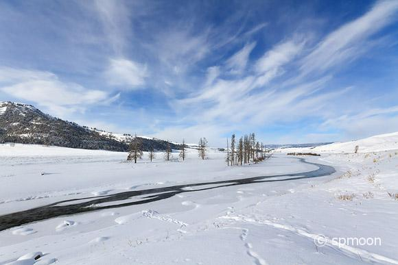Lamer valley in winter, Yellowstone National Park, MT.