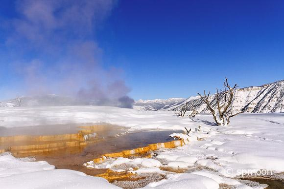 Colorful geyser in snow at Mammoth Hot Springs area, Yellowstone National Park.