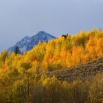 Grand Teton National Park(秋のグランドティトン国立公園)